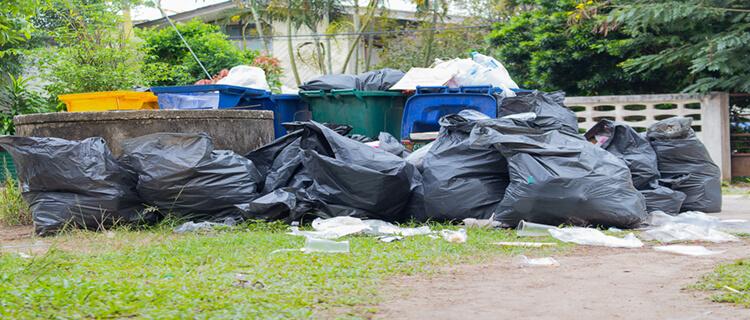 ゴミ屋敷片付け業者の費用事例