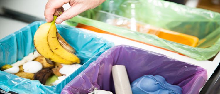 ゴミ屋敷の片付け手順
